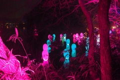 teamlab digitalized lake and forest