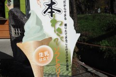 Azumino - Glace au wasabi