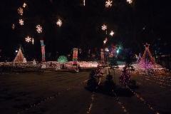 052-Illuminations du Lincoln Zoo, Chicago