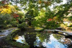 090-Jardin du sanctuaire Oyama, Kanazawa