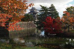 099-Château de Matsumoto et feuillages d'automne