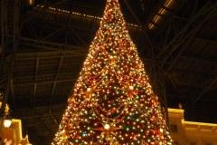 Disneyland à Noël - Le grand sapin
