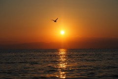Enoshima - Coucher de soleil