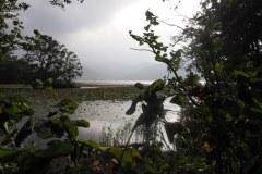 Hakodate - Konuma