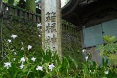 Hakone - Sanctuaire