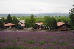 Furano - Farm Tomita