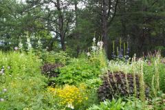 Furano - Kaze no garden