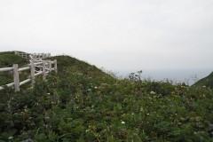 Rebun - Chemin de randonnée de Momoiwa