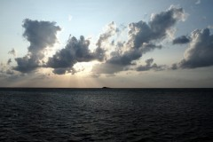 Cap Soya
