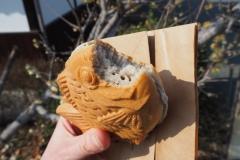 Taiyaki à la farine de sarrasin