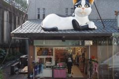 Jiufen - Boutique chat