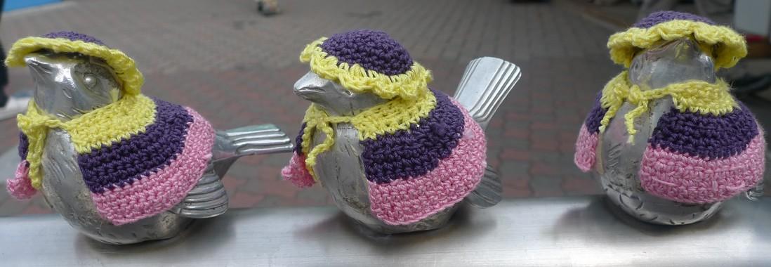 oiseaux enoshima