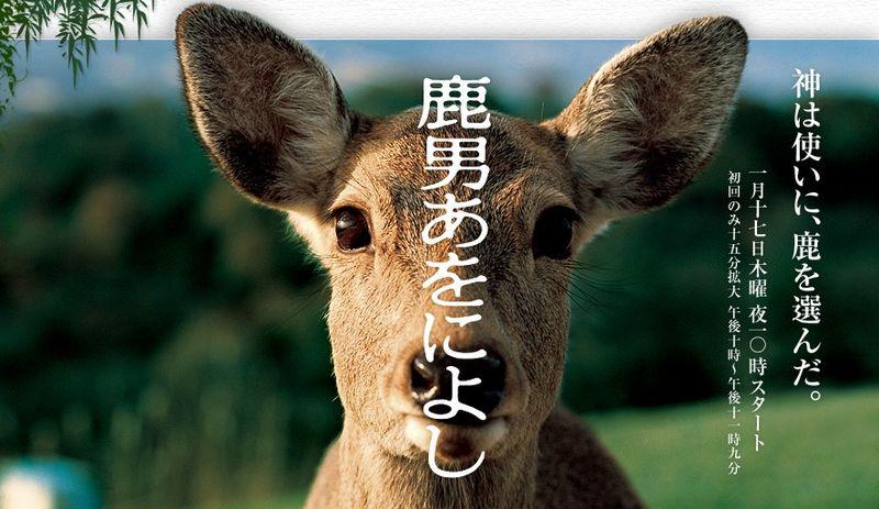 shikaotoko aoniyoshi