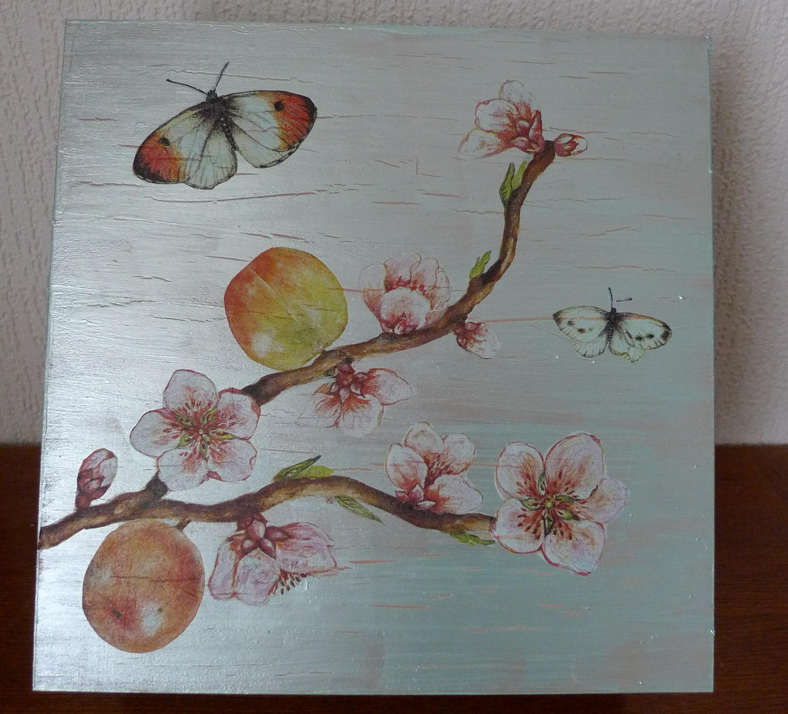 boitepommierpapillons