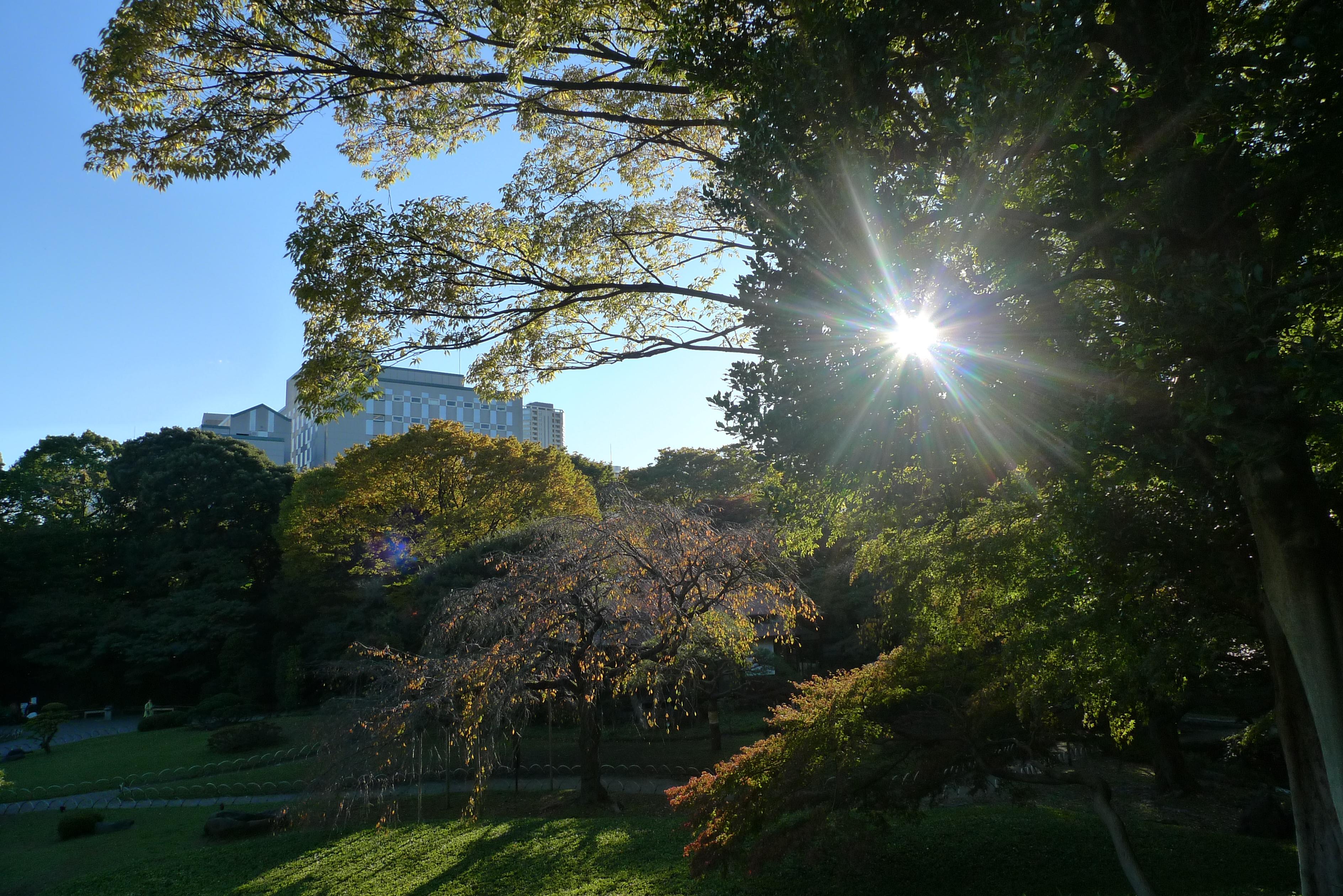 tokyo koishikawa korakuen