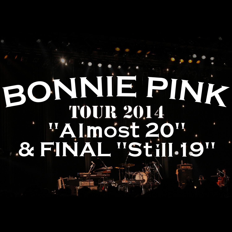 bonnie pink concert tokyo 2014