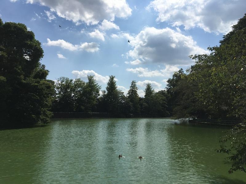 parc musashiseki