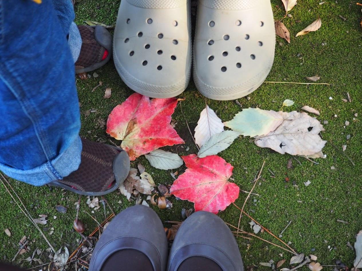 crocs family feuilles d'automne