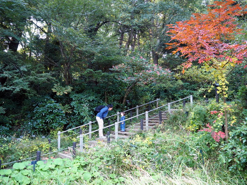 meguro réserve naturelle