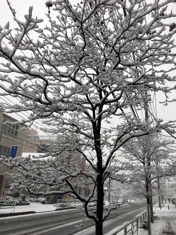 neige tokyo janvier 2018