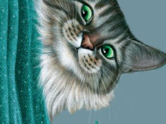 arikawa hiro mémoires d'un chat