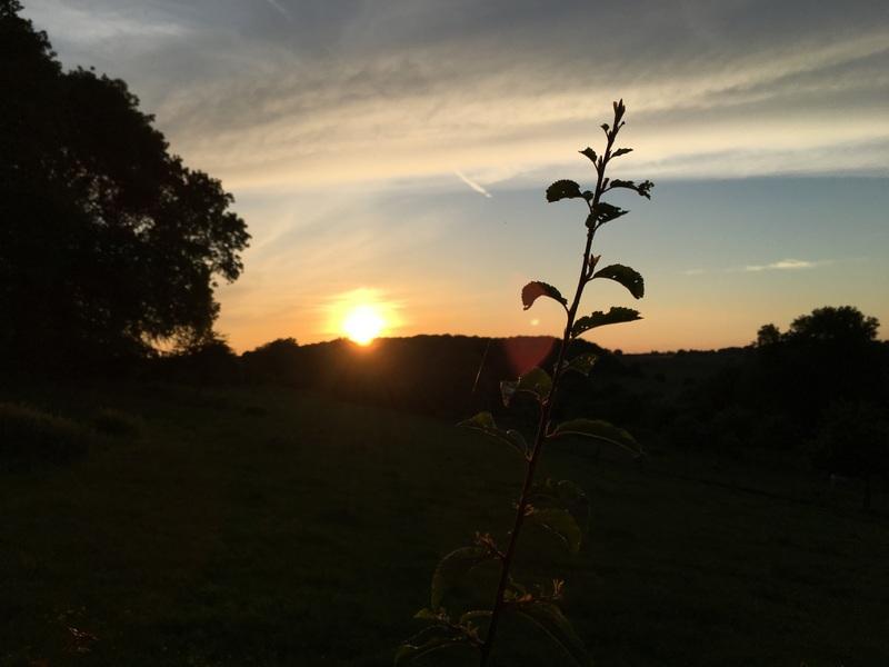 coucher soleil campagne