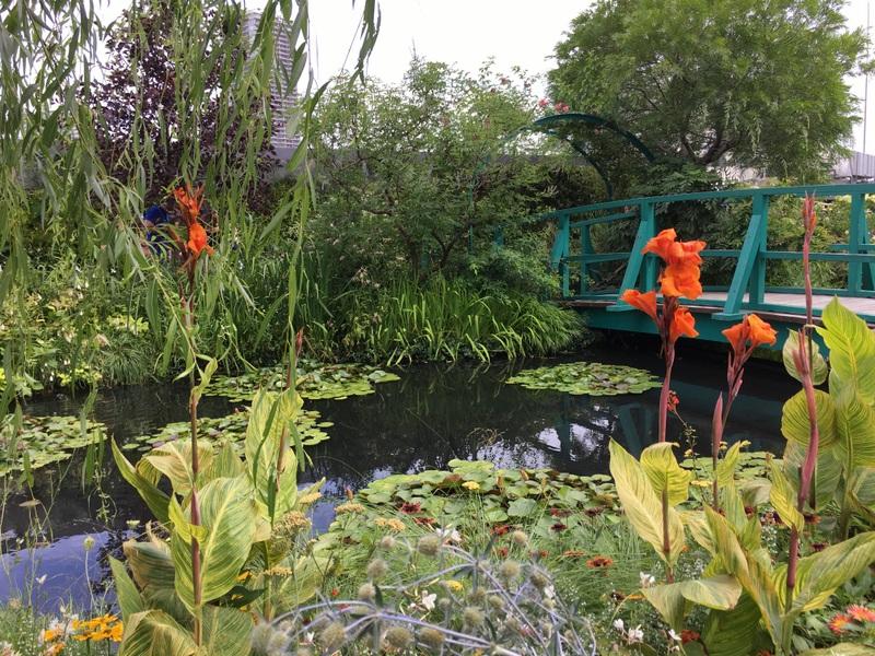 ikebukuro jardin nénuphars