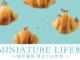 tanaka tatsuya miniature life
