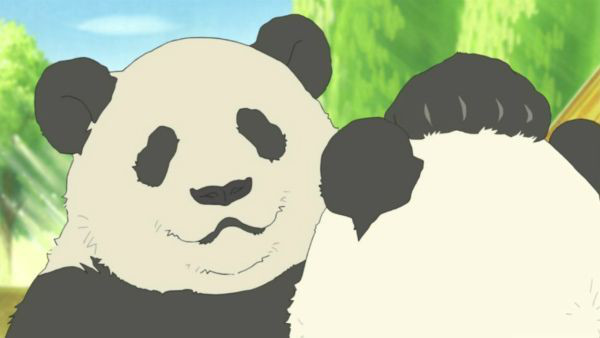 jokin panda