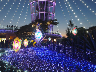illuminations enoshima