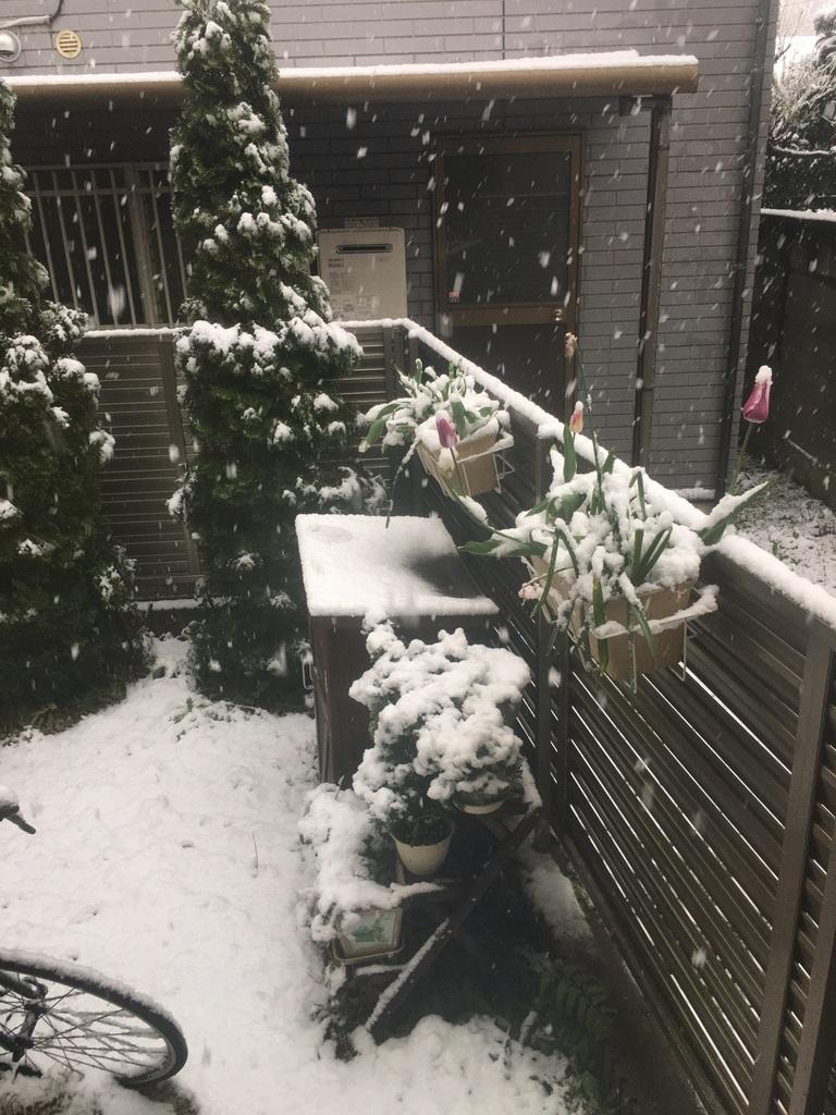 neige 29 mars